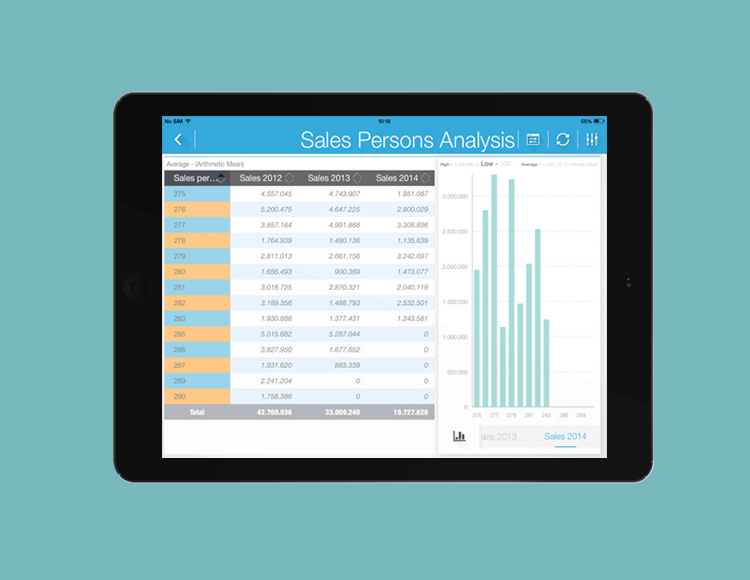 product management of business intelligence mobile tool